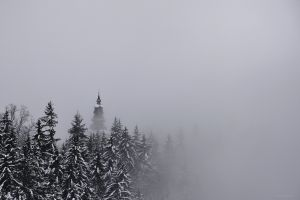 snow pine trees winter church