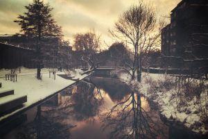 snow reflection city trees
