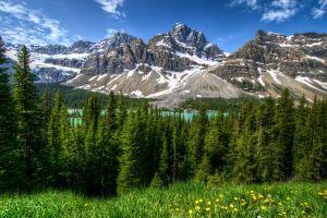 snowy mountain mountains banff national park landscape nature alberta