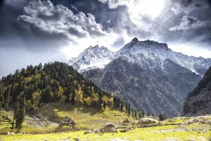 snowy peak nature forest grass kashmir mountains landscape clouds trees fall