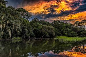 south carolina reeds reflection clouds landscape sky trees foliage summer forest hdr river water sunset nature