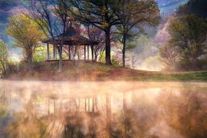 spring mist lake nature trees cherry blossom grass water reflection mountains south korea landscape
