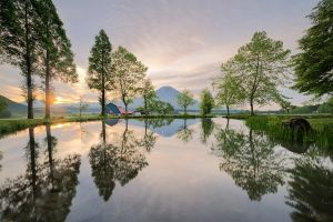 spring trees landscape japan nature pond grass water mountains reflection