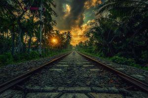 sri lanka nature landscape sunset clouds palm trees railway tropical shrubs