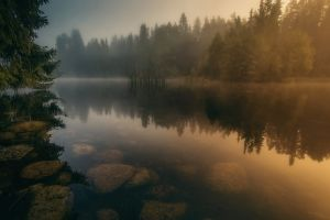 stones calm finland trees forest reflection river water landscape nature mist