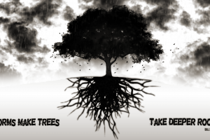 storm trees quote roots