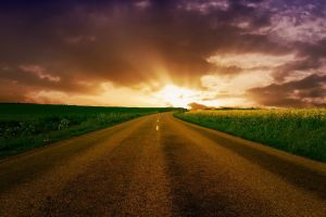 sunlight asphalt landscape road