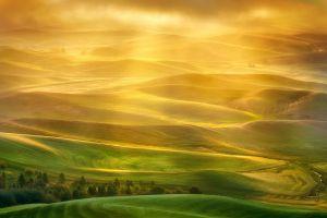 sunlight field hills