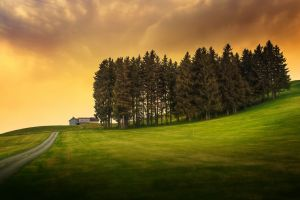 sunlight road nature trees field clouds hills house grass landscape hdr