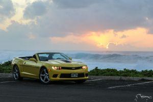 sunset chevrolet camaro bumblebee sky beach chevrolet sea yellow hawaii chevrolet camaro ss