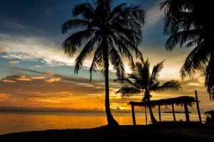 sunset landscape sea horizon silhouette tropical