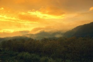 sunset landscape trees clouds mountains mist nature sky yellow