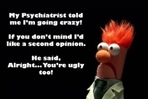 the muppets humor quote