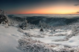 trees clouds panoramas snow valley hills winter landscape nature