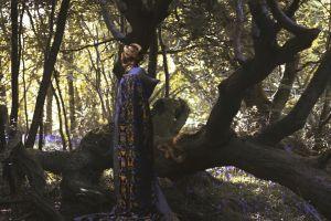 trees fantasy girl fantasy art wood nature