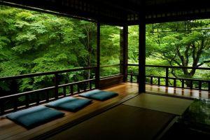 trees interior design asian architecture interior minimalism
