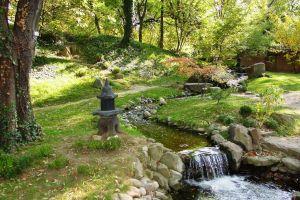 trees japanese garden creeks lantern garden