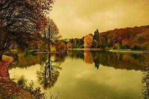 trees landscape fall lake