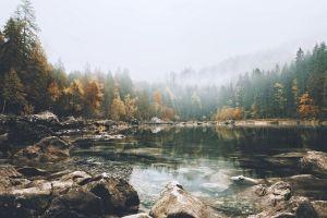trees landscape lake