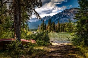 trees mountains plants boat pine trees lake landscape forest nature water