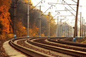 trees railway fall