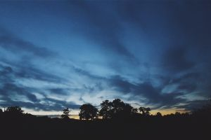trees sky landscape sunset calm clouds night photography nature