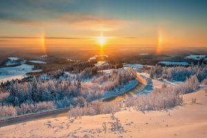 trees winter landscape