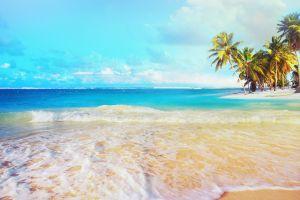 tropical landscape palm trees sea foam sea beach