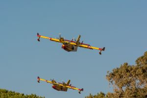 vehicle canadair aircraft airplane