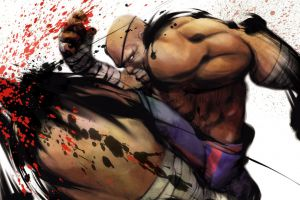 video games street fighter sagat (street fighter)