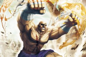 video games video game warriors street fighter