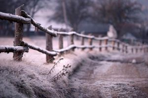 village ice fence outdoors cold winter