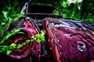 vintage plants pink rust car green wreck
