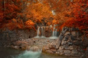 wall bridge river landscape red park nature amber leaves fall trees