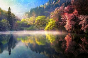 water landscape south korea forest reflection mist hills lake colorful spring nature trees