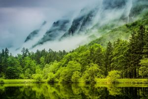 water mist mountains green trees lake clouds spring nature landscape germany forest