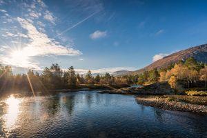 water sunlight nature river
