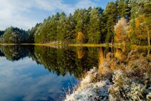 water trees snow fall reflection shrubs lake landscape calm scotland forest nature