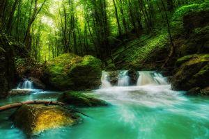 waterfall nature sunlight moss trees water green landscape rock forest