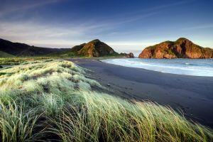 waves sea beach coast grass landscape nature hills