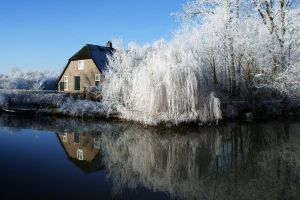 winter house water reflection