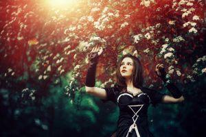 women brunette black dress dark hair dress nature