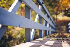 wood outdoors bridge