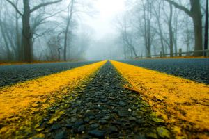 worm's eye view winter road mist outdoors