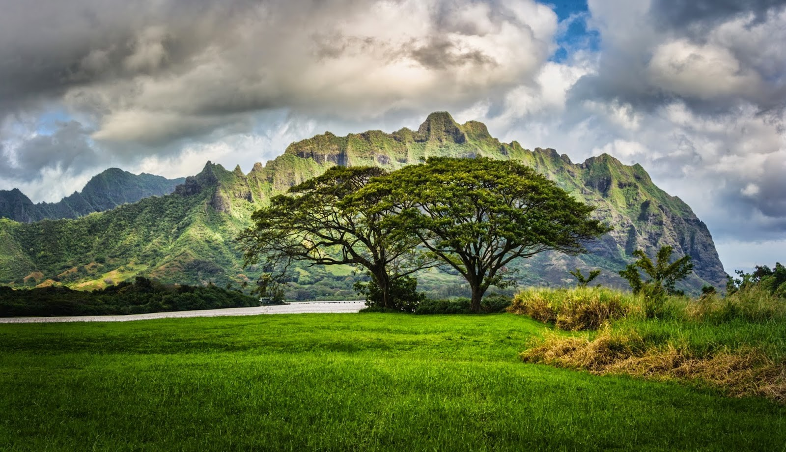 trees mountains landscape clouds grass river green nature