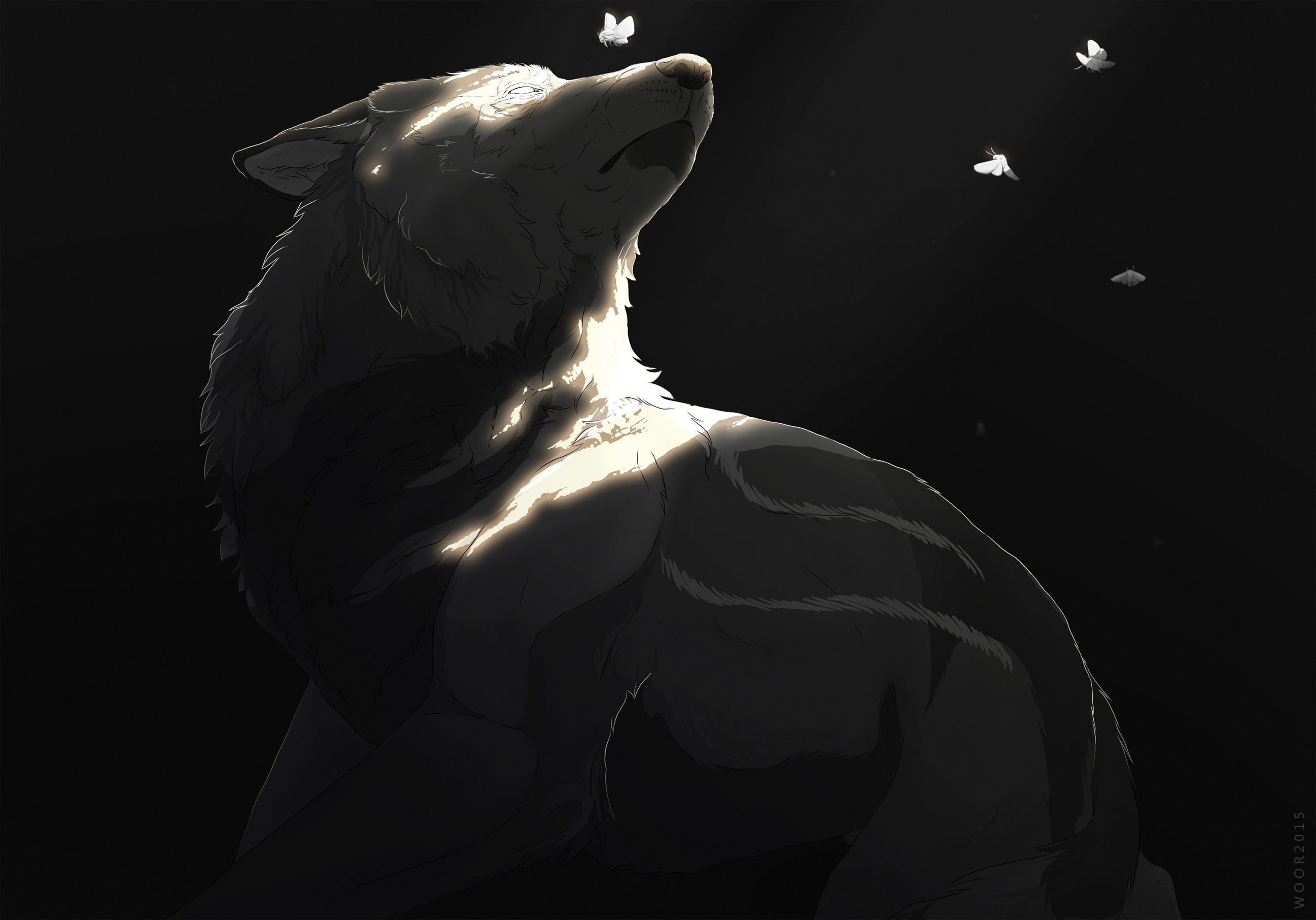 wolf painting winter